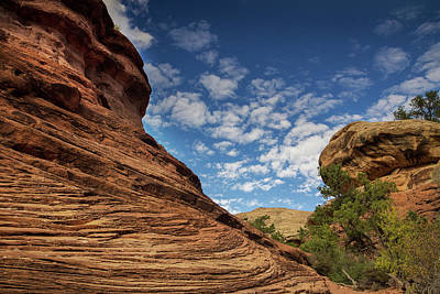 Photograph - Contours Of Canyonlands by Kunal Mehra