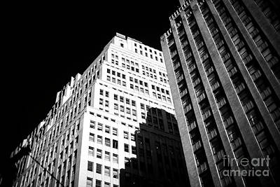 Photograph - Contrast by John Rizzuto