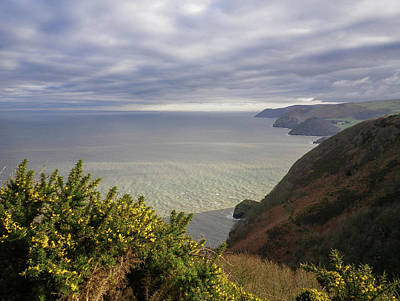 Photograph - Contrasts Near Heddons Mouth Devon by Richard Brookes