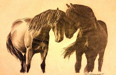Recently Sold - Animals Drawings - Contrasting Love by Michael Schimank