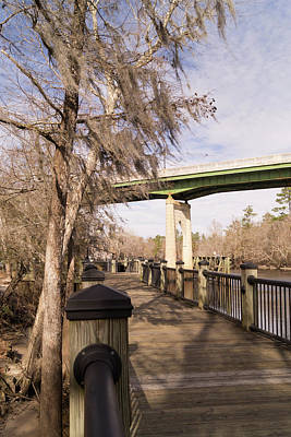Photograph - Conway Riverwalk In January by MM Anderson