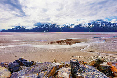Photograph - Cooks Inlet In Alaska by Dee Browning