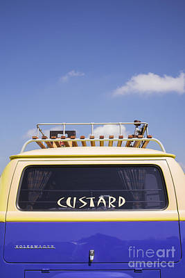 Photograph - Cool As Custard by Tim Gainey