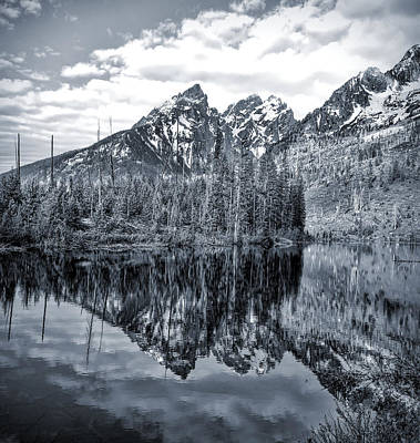 Photograph - Cool Blue Jenny Lake Reflections by Dan Sproul