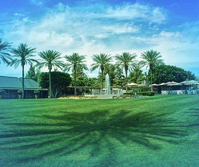 Photograph - Cool Blue Palm Rees And Shadows by Aimee L Maher Photography and Art Visit ALMGallerydotcom
