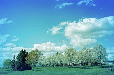 Photograph - Cool Blue Perfect Day by Aimee L Maher Photography and Art Visit ALMGallerydotcom