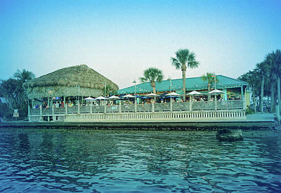 Photograph - Cool Blue Sams On The Gulf by Aimee L Maher ALM GALLERY