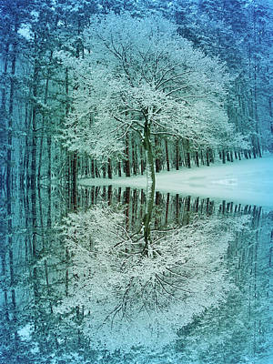 Park Photograph - Cool Blue Winter Reflection by Aimee L Maher Photography and Art Visit ALMGallerydotcom