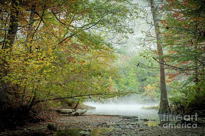 Art Print featuring the photograph Cool Morning by Iris Greenwell