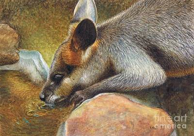 Marsupial Painting - Cool Relief by Karen Hull