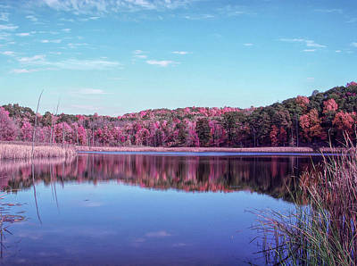 Photograph - Cool Sunset Autumn Pond by Aimee L Maher Photography and Art Visit ALMGallerydotcom