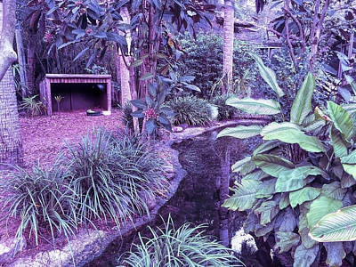 Photograph - Cool Sunset Beautiful Garden by Aimee L Maher Photography and Art Visit ALMGallerydotcom