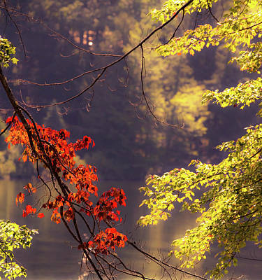 Photograph - Cool Vermont Autumn Day by Sherman Perry