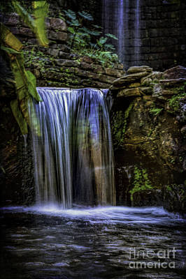 Photograph - Cool Water by Ken Frischkorn
