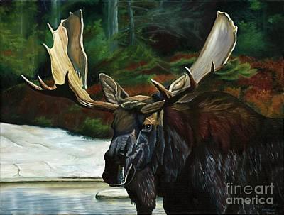 Moose Painting - Cooling Off by Heidi Parmelee-Pratt