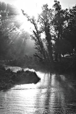 Photograph - Coon Creek Portrait Bnw by Bonfire Photography