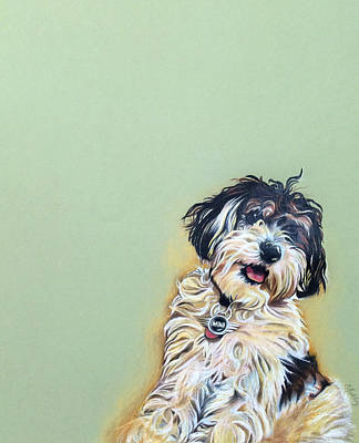 Cooper Art Print by Carol Meckling