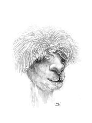 Drawing - Cooper by K Llamas