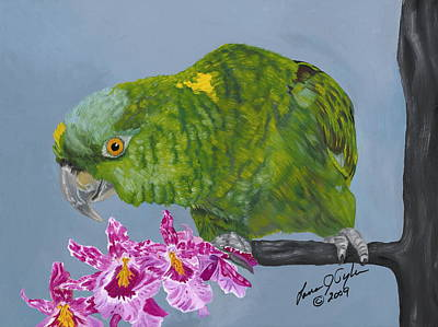 Amazon Parrot Painting - Cooper by Lana Tyler