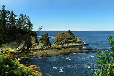 Photograph - Coos Bay  by Christiane Schulze Art And Photography