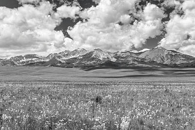 Photograph - Copper Basin Meadows by Mark Mille