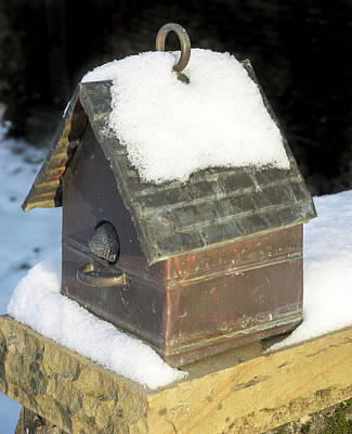 Photograph - Copper Bird House In The Snow by Douglas Barnett