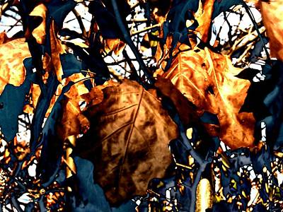 Photograph - Copper Leaves by Beth Akerman