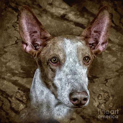 Puppies Mixed Media - Copper by Shafawndi Heartski