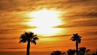 Photograph - Coppertone Sunrise  by John Glass