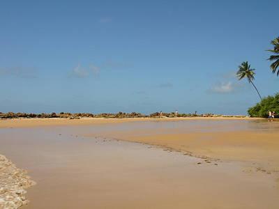 Photograph - Coqueirinho Beach by Paulo Zerbato