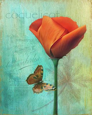 Coquelicot Art Print