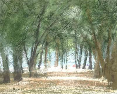 Painting - Coquina Beach Pines by Mary Lynne Powers