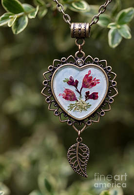 Photograph - Coral Bell Pressed Flower Pendant by Em Witherspoon