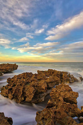 Photograph - Coral Cove Park by Juergen Roth