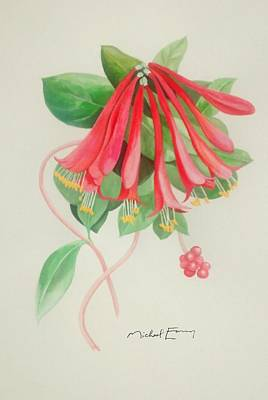 Painting - Coral Honeysuckle by Michael Earney