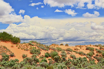 Photograph - Coral Pink Sand Dunes State Park # 3 by Allen Beatty