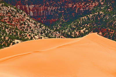 Photograph - Coral Pink Sand Dunes State Park by Allen Beatty