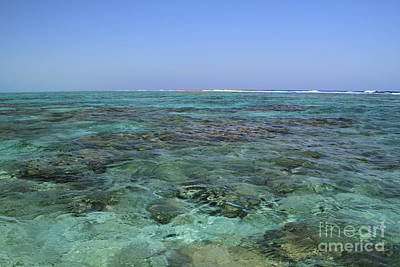Art Print featuring the photograph Coral Reef And Breakers by Edward R Wisell