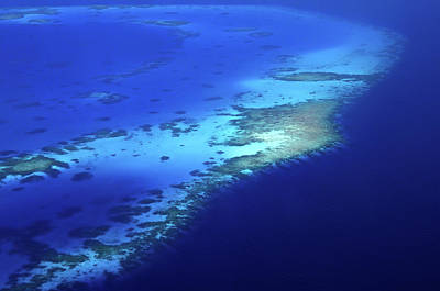 Photograph - Coral Reef Patterns 1. Aerial Journey Around Maldives by Jenny Rainbow