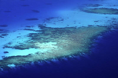 Photograph - Coral Reef Patterns. Aerial Journey Around Maldives by Jenny Rainbow