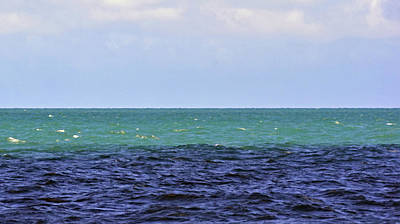 Photograph - Coral Sea No. 5-1 by Sandy Taylor