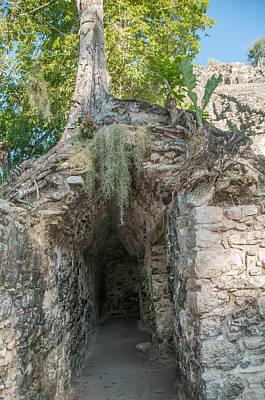 Digital Art - Corbeled Vault Passages In Grupo Coba At The Coba Ruins  by Carol Ailles