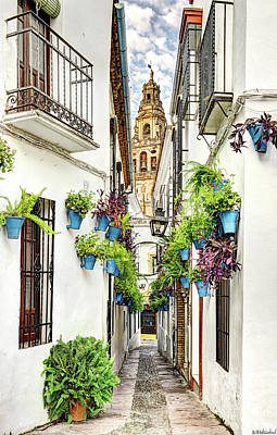 Photograph - Cordoba Flower Street by Weston Westmoreland