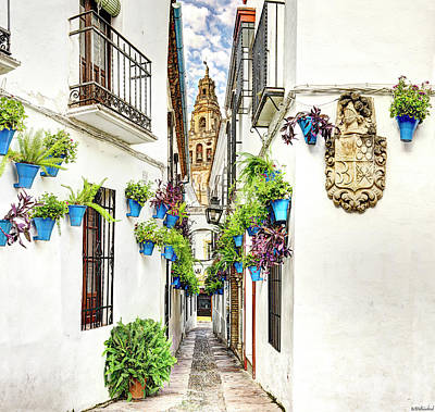 Photograph - Cordoba Flower Street Wide by Weston Westmoreland