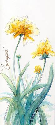 Coreopsis Art Print by CheyAnne Sexton