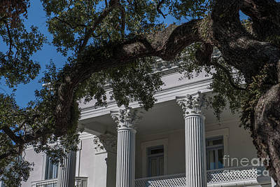 Valentines Day - Corinthian Columned Portico by Dale Powell