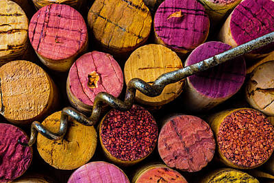 Vintner Photograph - Corkscrew Close Up by Garry Gay