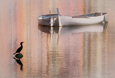 Photograph - Cormorant And Boats by Joe Bonita
