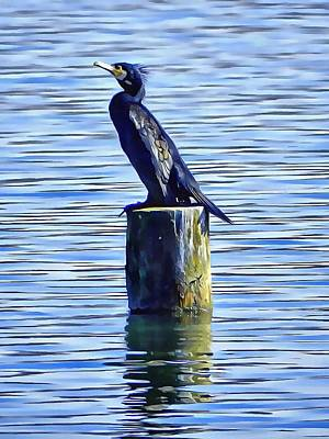Chiusi Photograph - Cormorant Just Chilling by Dorothy Berry-Lound