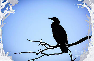 Spoonbill Digital Art - Cormorant Silhouette by Trudee Hunter